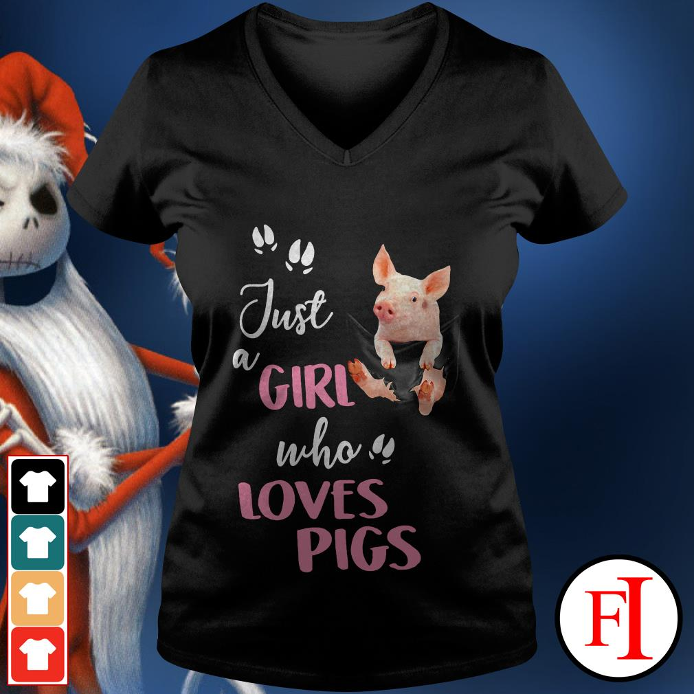 Official Just a girl who loves pigs V-neck t-shirt