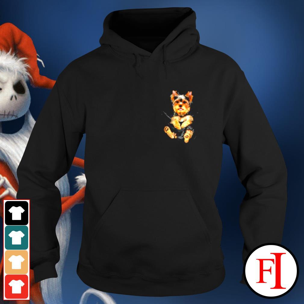 Yorkshire Terrier in Pocket s hoodie